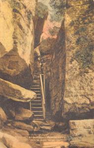 Olean New York~Rock City Park~The Stairway~1920s Handcolored Albertype Postcard