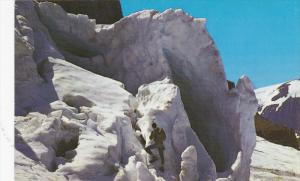CANADIAN ROCKIES, Canada, 1940-1960s; Columbia Icefield, Towering Seracs, Or ...