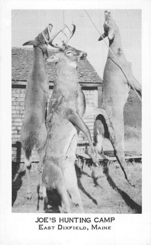 East Dixfield Maine Joes Hunting Camp Deer Vintage Postcard K101674