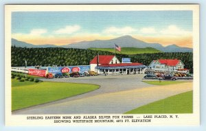 LAKE PLACID, NY ~ Sterling Eastern Mink & Alaska Silver Fox Farms c1940 Postcard