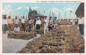 Florida Tarpon Springs Sponges At Sponge Exchange 1935 Curteich