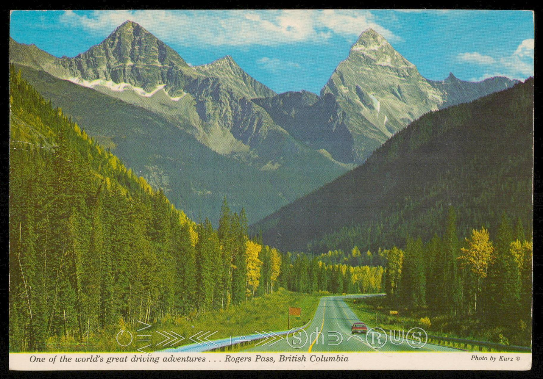 Through Glacier National Park / HipPostcard