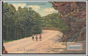Arkansas Bridle Paths in the Ozarks Postcard