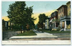 3rd Avenue Street Scene Louisville Kentucky 1907c postcard