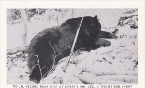 700 Pound Record Bear Shot At Avery's Inn 1 December 1962 By Bob Avery