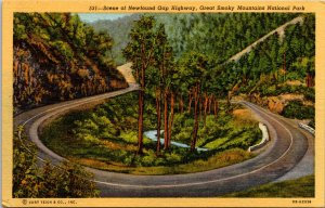 Newfound Gap Hwy Great Smokey Mountains National Park Postcard unused 1930s/40s