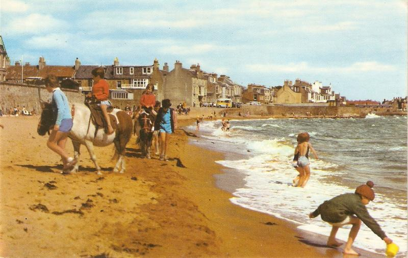 Chidren and horses in the sands Nice English PC 1970s. Standard size