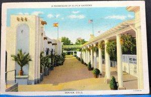 Elitch Gardens Promenade Denver 1951 Colorado Vintage Postcard