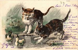 CATS PC Cats and ducks (a2091)