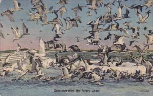 New Jersey Red Bank Greetings From The Jersey Coast 1953