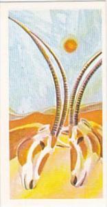 Brooke Bond Vintage Trade Card Vanishing Wildlife 1978 No 25 Scimitar Horned ...
