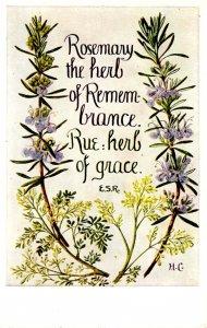 Herb Garden Series #614. Editor: Eleanore S. Rohde; Design by Hilda M Coley
