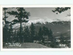 Pre-1962 rppc NICE VIEW Jasper Alberta AB W1014