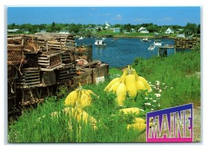 Postcard Corea by the Sea, Maine ME lobster traps buoys MS969
