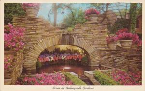 Scene in Bellingrath Gardens, MOBILE, Alabama, 40-60s