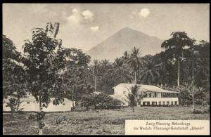 Germany Kamerun Postcard PPC Plantation Bibundi Mokudange Cameroun West-Af 85107