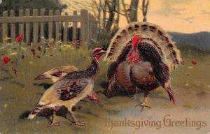 PFB Thanksgiving~Turkey Couple Outside Fence~Red Poppies~Embossed~Serie 8409