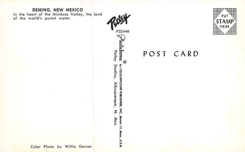Deming NM~Go To Rexall~Bowman's Print~Luna Theatre, Art Deco Sign~Texaco 1950s