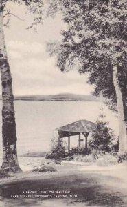 New Hampshire Blodgetts Landing Lake Sunapee Restful Spot Artvue
