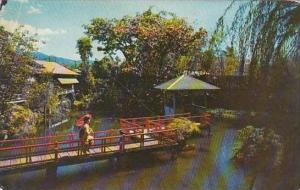 Hawaii Honolulu Mochizuki Tea House