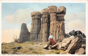 LP21  Near Gallup   New Mexico Postcard  Fred Harvey Detroit  Publisher