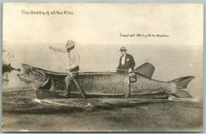 EXAGGERATED FISHING 1911 ANTIQUE REAL PHOTO POSTCARD RPPC DADDY OF ALL THE PIKE