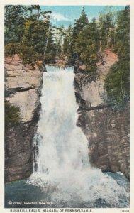 BUSHKILL , Pennsylvania, 1910s; Bushkill Falls, Niagara of Pennsylvania