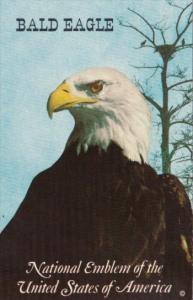 BIrds Bald Eagle National Emblem Of The United States Of America