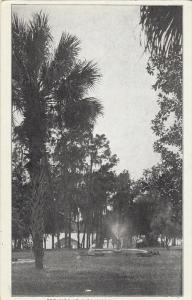 Fountain, Grounds At Florence Villa, Florida, 1910-1920s