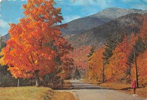 US Whiteface Mt. In the Adirondacks of N.Y. autumn landscape