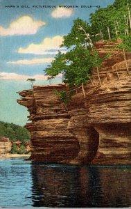 Wisconsin Dells Hawk's Bill