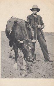 Billy the Bull , 6 Legs , 4 Shoulders, double backbone..00-10s