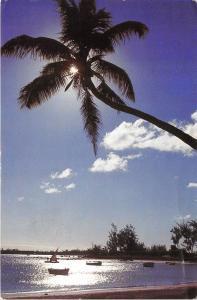 B35392 Ile Maurice Mauritius Grand Baie