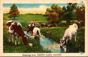 Maine Greetings From Green Lake 1953