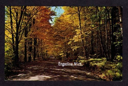 MI View of Country Road in ENGADINE MICHIGAN Postcard