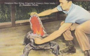 Dangerous Man Killing Alligators At Casper's Gator Jungle Saint Augustine Flo...