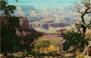 Grand Canyon National Park Arizona Moran Point Tucson AZ pm 1971 Postcard