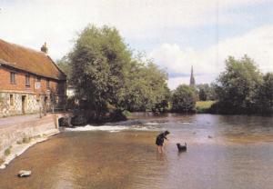 Wiltshire Postcard Salisbury Cathedral from Harnham Mill by J. Arthur Dixon Q3