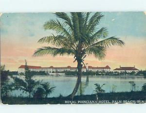 Divided-Back HOTEL SCENE Palm Beach - West Florida FL H1415