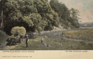 CORNWALLIS RIVER, Nova Scotia, Canada, 1900-10s; In The Acadian Land