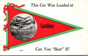 Oregon Sandlake This Car Ws Loaded Pennant Series