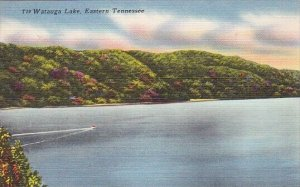 Watauga Lake Eastern Tennessee