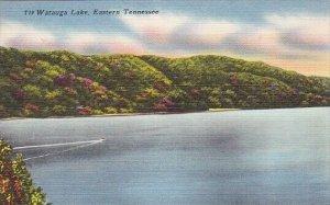 Watauga Lake Eastern Tennessee