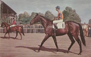 Postcard NASHUA Thoroughbred Belmont Stakes Winner 1955