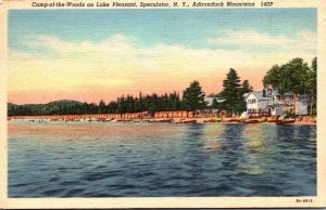 New York Adirondacks Speculator Camp-Of-The-Woods On Lake Pleasant 19452 Curt...