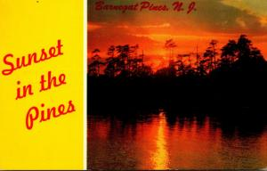 New Jersey Barnegat Pines Sunset In The Pines 1966