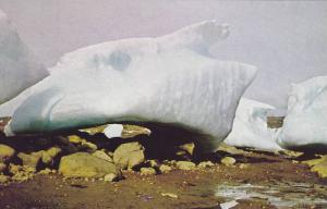 Ice Formation , Frobisher Bay , N.W.T. , Canada , 50-60s