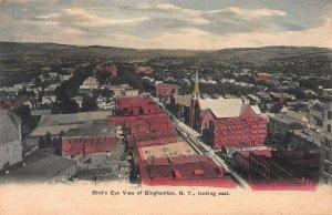 Bird's Eye View of Binghamton, New York, Looking East, Early Postcard, Unused