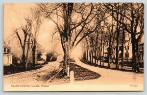 Calais Avenue Boulevard Maine~Colonial Homes~St Croix Masonic  Lodge~Sepia~c1910