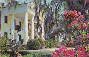 South Carolina Charleston Boone Hall Plantation